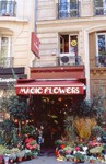 "A store called ""Magic Flowers"""