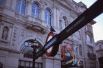 pigeon at Piccadilly Circus